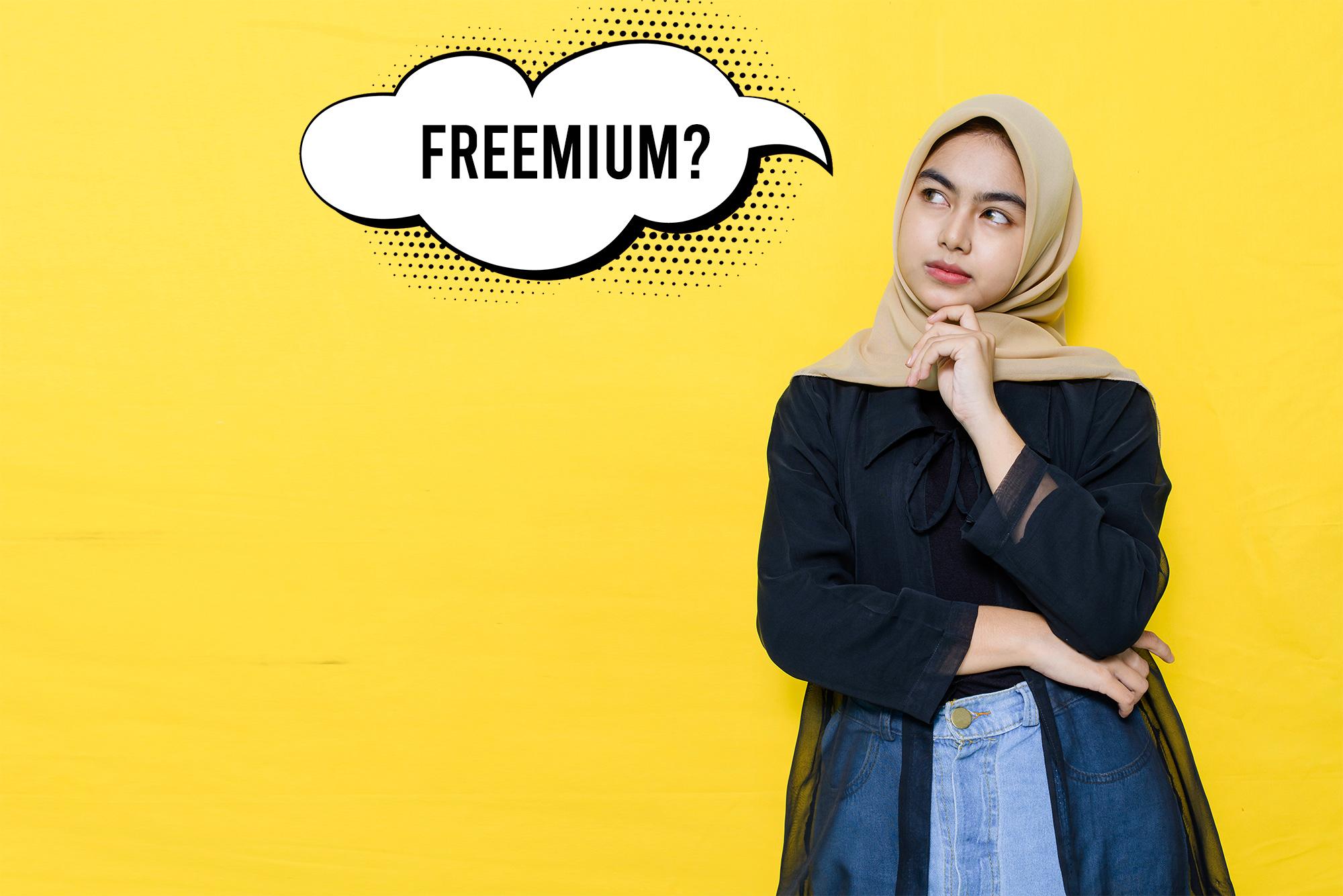 kledo pivot freemium